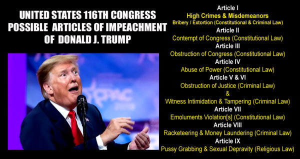 Trump Possible Articles of Impeachment_C copy