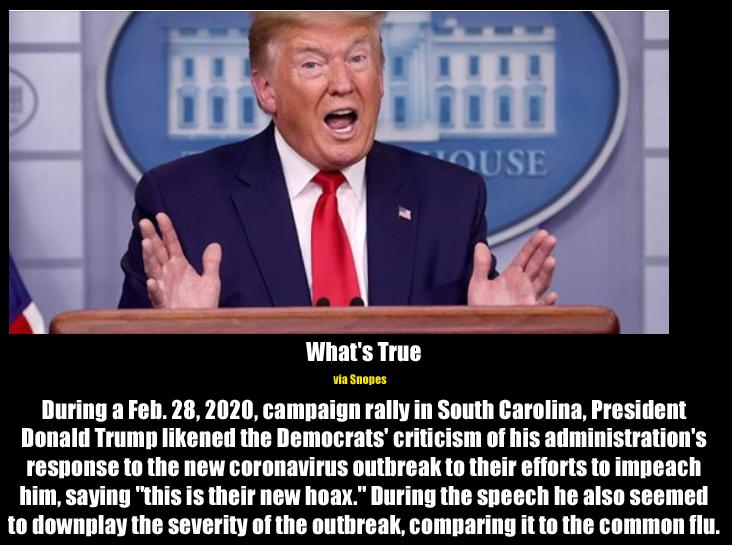 trump corona hoax