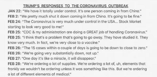 trump corona hoax2