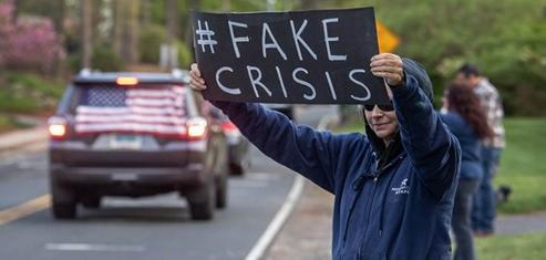 fakecrisiscovidiots
